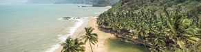 What are some of the coolest tips to do in Goa